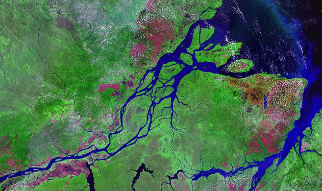 Bassin of Amazon river