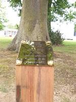 Plaque chêne yves blin
