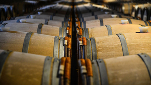 Is it profitable to invest in wine? by Christophe Spaenjers