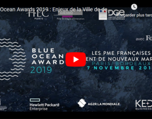 Blue Ocean Awards 2019 - Live YouTube