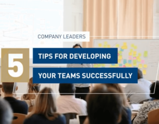 developing your teams