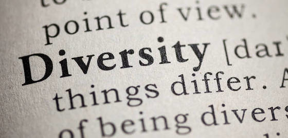 Diversity dictionary definition