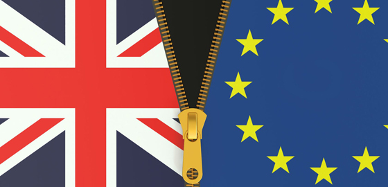 Three British expat professors working at HEC Paris react to Brexit vote