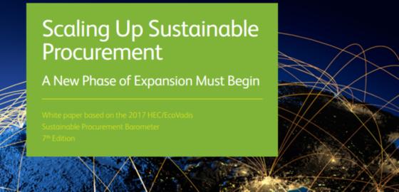 sustainable procurement study - Bruel